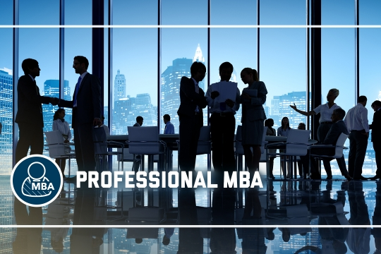 header graphic - The Professional MBA program at the GW School of Business