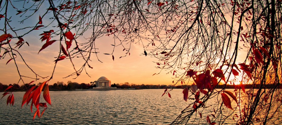 The Jefferson Memorial at dusk during fall